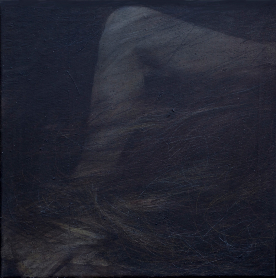 title: rudimentær. hår 2/ rudimentary. hair 2.  30 x 30 cm  3 000 DKR